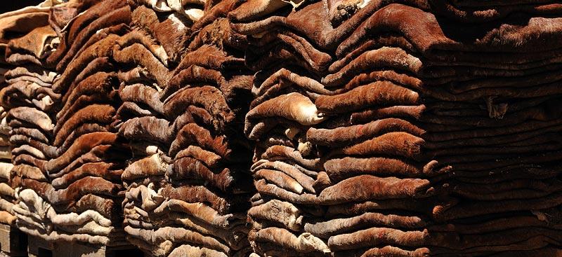 Le bronzage instantané les rappels sur les taches de rousseur